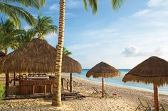 Tortuga Beach Bar located at Sunscape Sabor Cozumel! A perfect hotel for family-friendly wedding groups! #destinationwedding