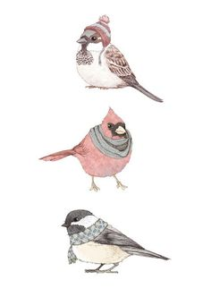 Birds used to be my favorite thing to draw