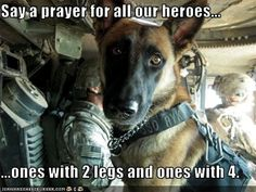 """""""Say a prayer for all our heroes, the ones with 2 legs and ones with 4."""""""