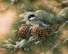 Artiste Animalier - Rosemary Millette - Mésange et pommes de pin en hiver