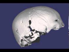3D laser scan of an archeological specimen (Screencast by Dave Errickson - Teeside University, UK - from Screenr.com - YouTube)