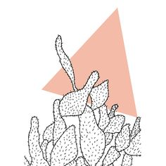 """""""Cactus"""" www.at MONA Graphics designed in Vienna Check out the webshop: www. Different Shapes, Wall Art Designs, Vienna, Cactus, Graphics, Graphic Design, Texture, Paper, Check"""