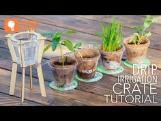 Tinker Crate Drip Irrigation Crate | Kids Crafts & Activities for Children | Kiwi Crate