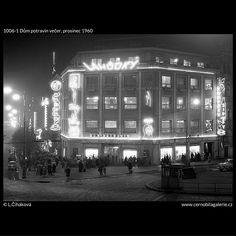 Dům potravin večer (1006-1) • Praha, prosinec 1960 • | černobílá fotografie, Václavské náměstí, večer, neony, lidé, ruch |•|black and white photograph, Prague|