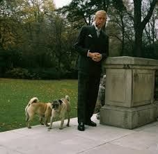 the duke of windsor style icon - Google Search