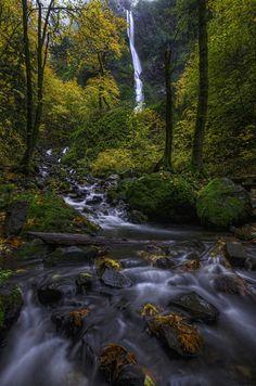 Starvation Creek Falls - Columbia River Gorge, Oregon