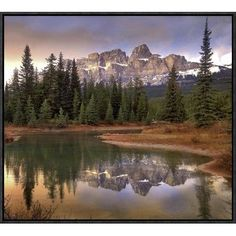 Global Gallery Castle Mountain and Boreal Forest Reflected in Lake, Banff National Park, Alberta by Tim Fitzharris Framed Photographic Print on Can...