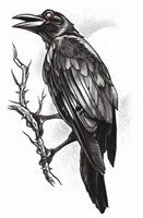 The Raven: Temporary Steampunk Tattoo