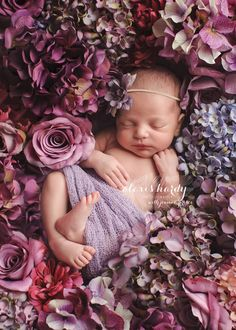 Sophie's newborn photo shoot idea