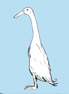 Lovely illustration of a lovely duck