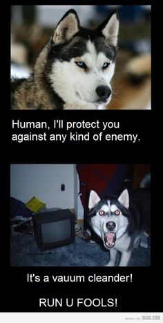 Human, I'll protect you against any kind of enemy. It's a vacuum cleaner , RUN YOU FOOL