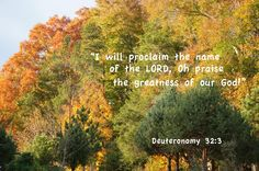 My Daily Bread Body and Soul | Taste and See That the LORD is Good!  Deuteronomy 32:3