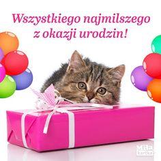 Dla każdego: URODZINY Fb Quote, Happy B Day, Impreza, Motto, Diy And Crafts, Happy Birthday, Humor, Quotes, Free