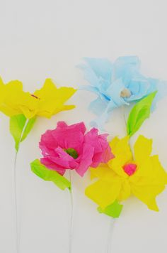 crepe paper and pompom flowers