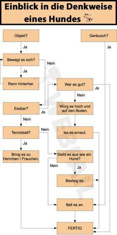 """Wie """"denkt"""" ein Hund? http://de.webfail.at/image/wie-ein-hund-denkt-win-bild.html"""