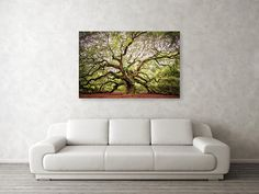 The Angel Oak Metal Print by Phyllis Burchett. All metal prints are professionally printed, packaged, and shipped within 3 - 4 business days and delivered ready-to-hang on your wall. Print, Angel Oak, Metal Prints, Fine Art, Got Print, Poster Prints, Beautiful Artwork, Artwork, Fine Art Photography