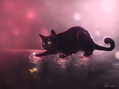 Under The Surface by Mizu-no-Akira on DeviantArt Cat Icon, Black Cat Art, Cat Drinking, Cute Cats And Dogs, Warrior Cats, Cute Baby Animals, Deviantart, Beautiful Cats, Cute Wallpapers