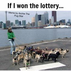 If I won the lottery....
