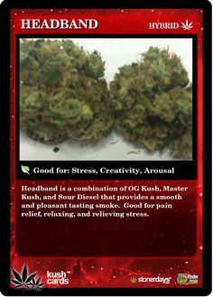 Headband | Repined By 5280mosli.com | Organic Cannabis College | Top Shelf Marijuana | High Quality Shatter