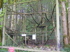 Raccoon Enclosure - for our future rescue ;)