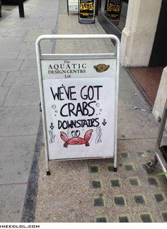Best crabs in town