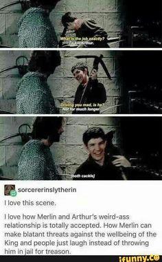 Merlin: I wish I could strangle Arthur to death while he hangs upside down in a pig pen The Knights: Ahahaha.Good one, Merlin! Merlin Memes, Merlin Funny, Merlin Merlin, Merlin Quotes, Colin Morgan, Fandoms, Hunger Games, Merlin Fandom, Jokes
