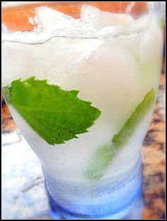 The Most Refreshing Drink in the World: Sparkling Limeade with Mint