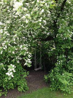 #Swings|In a secret alcove in the garden. So pretty!
