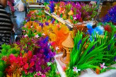 Shopping Chatuchak Market: the Ultimate Photo Guide to Bangkok's Best Market - Souvenir Finder Bangkok Travel, Thailand Travel, Chatuchak Market, Cool Things To Buy, Exotic, Marketing, Clothes, Shopping, Viajes