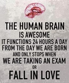 The human brain is awsome -http://quotespaper.com/quotes-about-life/5327