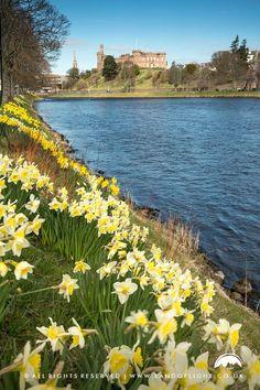 River Ness & Spring, Inverness, Scotland