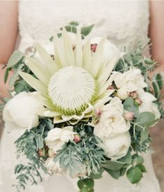 White king protea bouquet with eucalyptus and peonies Protea Wedding, Flower Bouquet Wedding, Flor Protea, Protea Bouquet, Australian Native Flowers, Bridal Flowers, Bride Bouquets, Beautiful Flowers, White Flowers