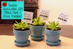 Thank You For Helping Me Grow - Teacher Appreciation Gift - Potted Plant Flower {Free Printable}