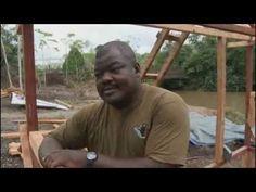 Émission du Vendredi 9 Novembre 2012 : #1 Gabon : l'homme et les éléphants - #2 Les territoires palestiniens occupés : du pain et de l'espoir.