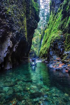 This One Epic 1-Mile Hike In Oregon Will Lead You Someplace Unforgettable