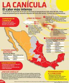 #Infografia La #Canicula, el #Calor más intenso vía @candidman La canícula es el periodo en el que se alcanzan las temperaturas más altas del año y se presenta después del inicio del #Verano.  Conoce cuáles son sus características...