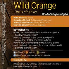 Wild Orange is one of my favorite oils. I diffuse it all the time. My favorite is to diffuse Serenity and Wild Orange at night. ZZZ ZZZ ZZZ #healthyisthenewblack