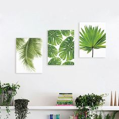 Canvas print plant painting wall tropical art picture unframed poster home decor Small Canvas Paintings, Small Canvas Art, Leaf Paintings, Painting Canvas, Plant Painting, Diy Painting, Art Vert, Art Tropical, Reproductions Murales