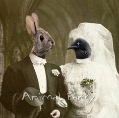 ...it was at this union, many, many, many years ago, that Mr. Hop and Missy Fairfeather started laying eggs, painting them and handing them out to people everywhere.   The End