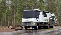 RV Tips for Yellowstone National Park - Yellowstone Wildlife Guide including Grizzly, Wolves, & Bison