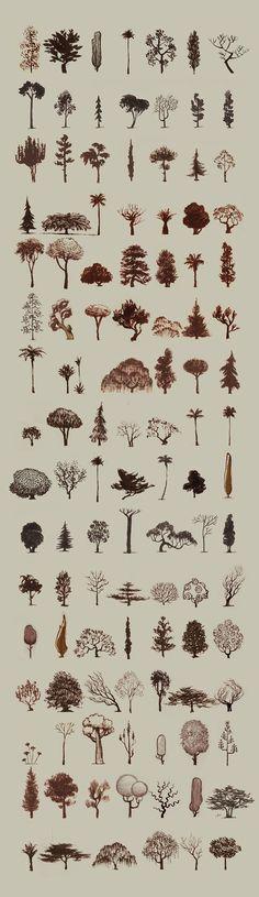 Santiago Verdugo: Árboles - trees Más