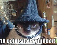 McGonagall!