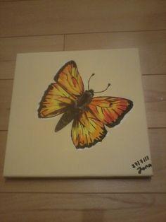 Butterfly drawn by Jonsu Ziegler with Acryl