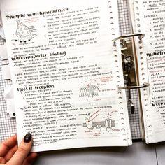 "no rain, no flowers - joannastudies: ""📝: neuropsych notes studygram : joannastudiess "" The Effective Pictures We O - School Organization Notes, Study Organization, Pretty Notes, Good Notes, Beautiful Notes, Class Notes, School Notes, College Notes, Science Notes"