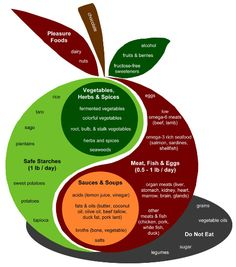 "Perfect Health Diet diagram couched inside the ""Is there any such thing as a safe starch on a low carb diet?"" article by Jimmy Moore."