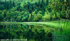 Clear as a mirror: fascinating scenes of China's 7 lakes.  The natural beauty of Shudu Lake is a must-see for tourists visiting Shangri-La in Southwest China's Yunnan province. [Photo/IC]