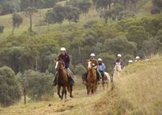 Rubicon Valley Horse Riding in Rubicon VIC 3712 Australia invites you, your friends and your family to enjoy fully instructed rides by professionals. Rubicon, School Holidays, Horse Riding, Holiday Ideas, Australia, Horses, Painting, Art, Craft Art