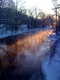 Michigan State University   The Most Winter Wonderful CollegeCampuses