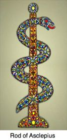 The staff or rod of Asclepius is the universal symbol for medicine. (The caduceus is only used in America!)