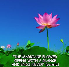 """""""THE #MARRIAGE FLOWER OPENS WITH A GLANCE AND ENDS NEVER""""(peretz) #Beloveds #Bride #Groom #EngagedCouples #Relationship #ceremony #ILY #Luv"""